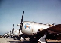 P-47-PICT1780