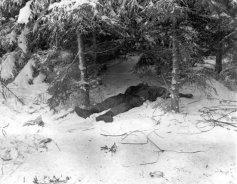 soldados da 101ª Divisão Airborne morto