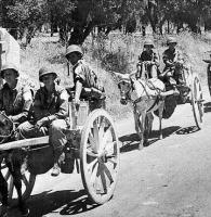Os Aliados tinham o melhor transporte da WWII