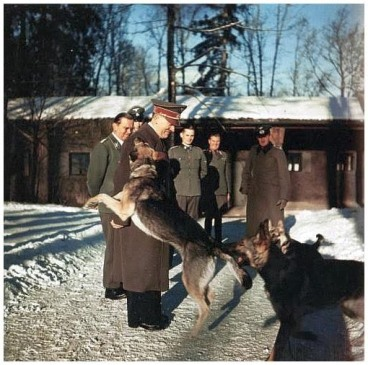 """Wolfsschanze"", Adolf Hitler mit Blondi, Winter 1942/43"