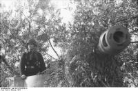 Italien, getarnter Panzerjäger Nashorn/Hornisse