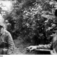 Frankreich, Soldaten hinter Gebüsch