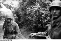 Frankreich, Soldaten hinterGebüsch