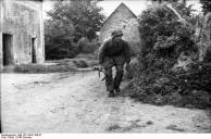 Frankreich, Soldat mit Gewehr hinter Büschen