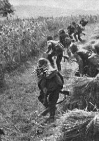 194347ai