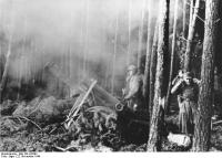 Hürtgenwald, schweres Infanteriegeschütz