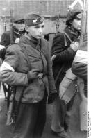 Warschauer Aufstand, bewaffnete Polen