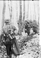Ardennenoffensive, deutsche Infanterie geht im Wald vor.
