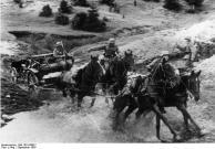 Polen, bespanntes Infanteriegeschütz