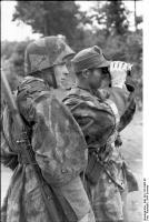 Frankreich, Soldaten mitFernglas