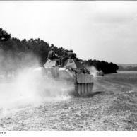 Frankreich, Jagdpanther im Gelände