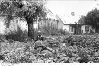 Warschauer Aufstand, Waffen-SS in Vorort