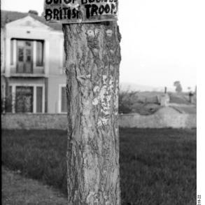 Griechenland, Schild an Baumstamm