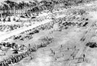 Vista aérea acampamento SanRossore